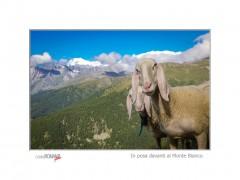 In posa davanti al Monte Bianco (Champillon)