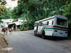 Seychelles   bus di linea