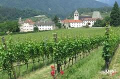 I vigneti intorno all'abbazia di Novacella (Bolzano)