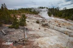 Yellowstone Norris Geyser Basin
