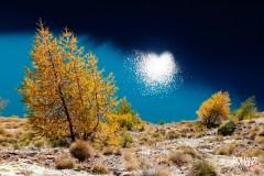 Cuore di luce (Lago di Place Moulin - Bionaz)