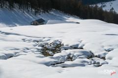 Alpe Fontaney
